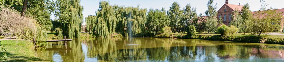 Fontanna przed pałacem w Zielonej